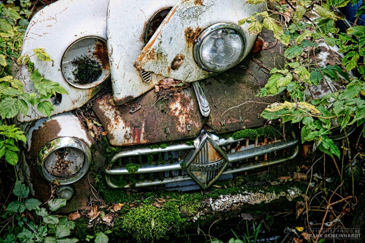 Autofriedhof Kaufdorf, Schweiz